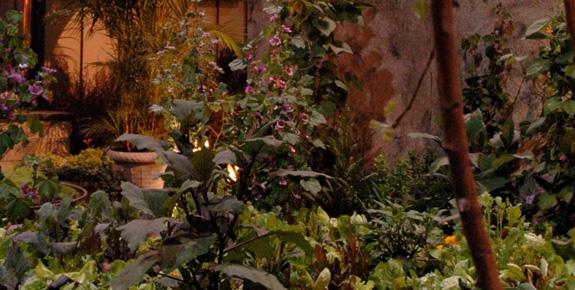 Le Jardin De Toit Du Chef (The Chef's Rooftop Garden)