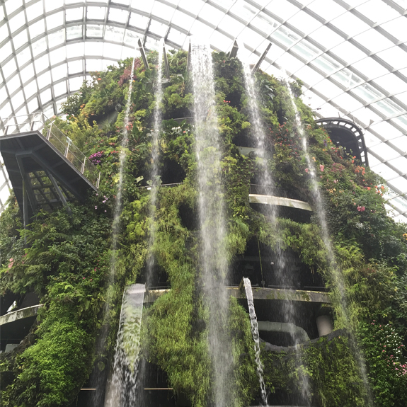 Conservatory Waterfall